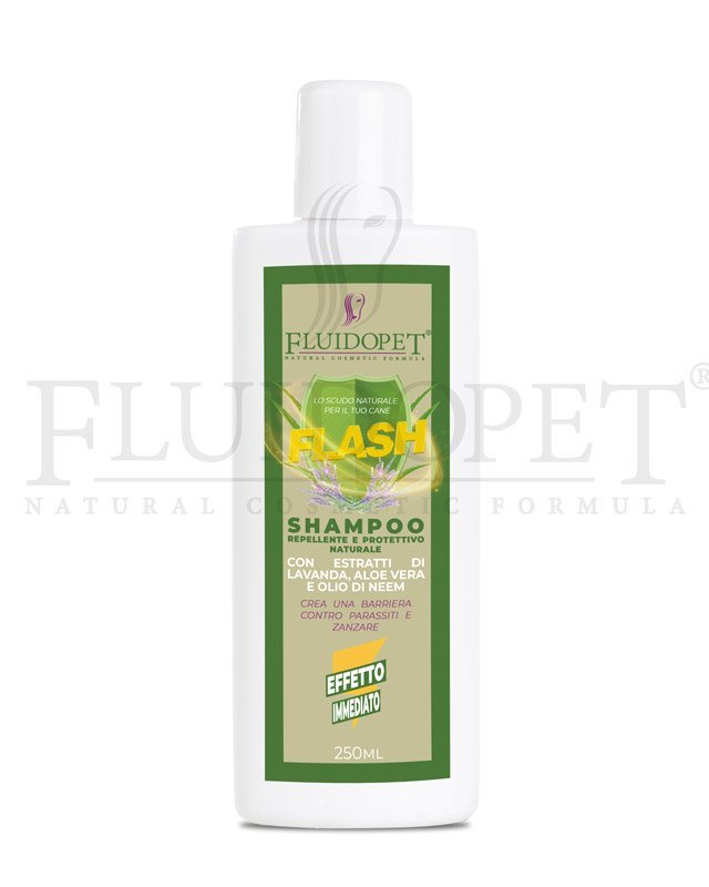 fluidopet flash shampoo