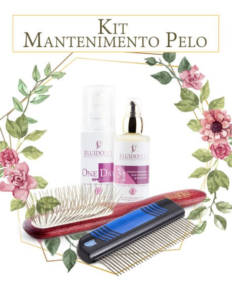 kit spazzolatura mantenimento pelo brushing kit