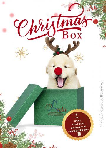 FluidoPet Christmas Box - Associazione Leda Onlus